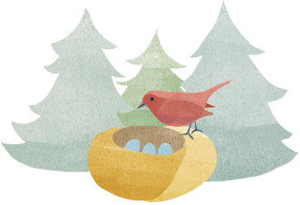 nest&bird